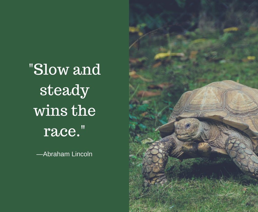 Slow and steady wins the race for social media marketing management. We remind our readers that consistency and a steady strategy is important for social media marketing.